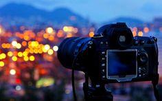A Universidade de Harvard, em parceria com a Alison.com, oferece umcurso a distância grátisdefotografia