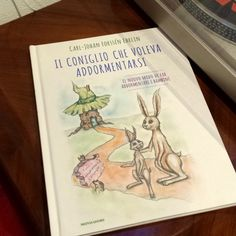Il coniglio che voleva addormentarsi è un caso letterario perchè con un metodo sperimentale aiuta i bambini capricciosi a trovare il sonno e per questo è il libro bestseller per la nanna