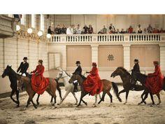 Bezoeken | Het Levend Paardenmuseum