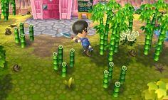 Miiverse - Página de usuario - Nintendo