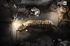 WWF: Extinction can't be fixed, Tiger       Extinction can't be fixed  Advertising Agency: BBDO, Spain