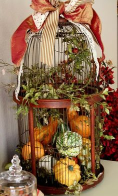 35 Fabulous Fall Decor Ideas by faye pumpkins and gourds in a bird cage. Thanksgiving Decorations, Seasonal Decor, Holiday Decor, Family Holiday, Thanksgiving Holiday, Holiday Ideas, Halloween Decorations, Vintage Fall Decor, Vintage Party