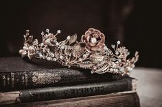 Read closed from the story Weekly Writing Contests Crown Aesthetic, Queen Aesthetic, Princess Aesthetic, Book Aesthetic, Character Aesthetic, Aesthetic Pictures, Dark Princess, Fantasy Princess, Modern Princess