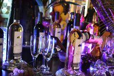 Management Cocktail @Sandos Playacar Beach Experience Resort
