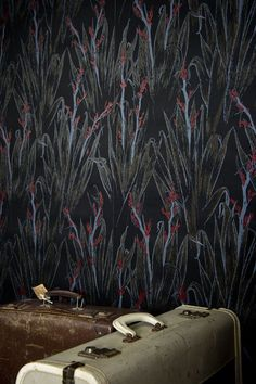 PaperHands hand made screen printed wall paper New zealand NZ made using premium waterbased solvent free inks designer wallpaper Paper News, Investment Property, Wall Wallpaper, Designer Wallpaper, Wall Prints, Creative Inspiration, New Zealand, Screen Printing, How To Find Out
