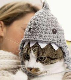 DIY-Anleitung: Haifischmütze für Katze häkeln via DaWanda.com