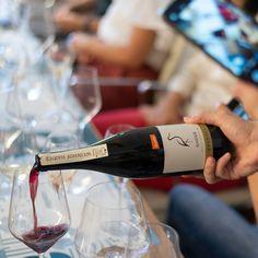 Vino rosso biodinamico certificato Demeter, proveniente dal Burgenland in Austria, da vitigno Zweigelt. I grappoli crescono da vigneti posti su terreni ciottolosi e baciati da numerose giornate di sole durante il periodo di maturazione degli acini. Il risultato è un vino rosso ricco e concentrato, dai profumi intensi di frutta rossa che si intrecciano con una piacevolissima e delicata tostatura, dal caffè al cuoio. Il sorso è succoso, avvolgente e di buona alcolicità. Austria, Film, Red Wine, Alcoholic Drinks, Glass, Dinners, Meals, Movie, Film Stock