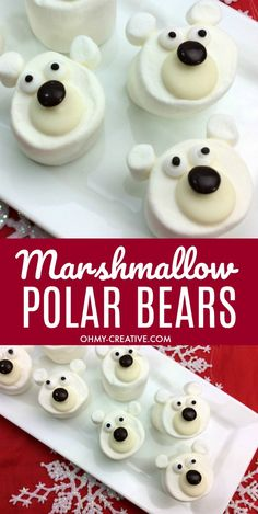 These Marshmallow Polar Bear Craft Treats are adorable! A perfect Christmas or winter treat to add to a cup of hot chocolate! Easy to make polar bear treat! Winter Treats, Holiday Treats, Holiday Recipes, Chocolate Bomb, Hot Chocolate Bars, Hot Chocolate With Marshmallows, Christmas Snacks, Christmas Baking, Diy Christmas