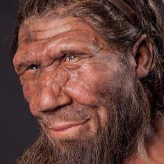 Twitter / LondonSciFest: Neanderthal model, part of ...