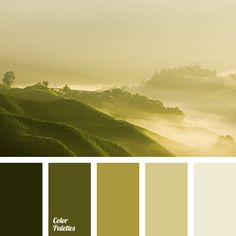 Color Palette 2363
