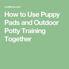 How to Use Puppy Pads and Outdoor Potty Training Together