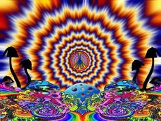 52 Ideas for trippy art psychedelic drugs optical illusions Art Hippie, Hippie Peace, Hippie Chick, Hippie Life, Hippie Style, Psychedelic Drugs, Psychedelic Experience, Psy Art, Fractal Art