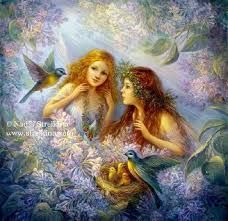 margaret tarrant flower fairies - Google Search