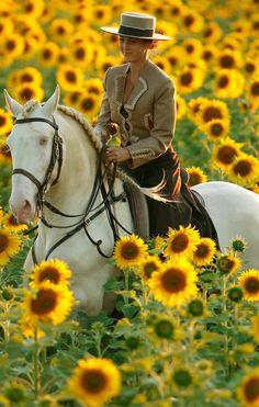 "Cremello Andalusian ""Sasou"" | Kenzie Dylsi  http://kenzie-dysli.de/sasou.html"