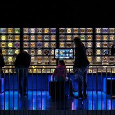Micropia: o primeiro museu do mundo dedicado aos micro-organismos