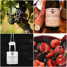 PINOT NOIR #Red #Wine #PinotNoir #Good #Vin #Rouge