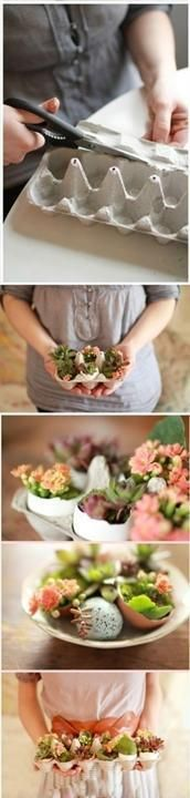 Discover thousands of images about Nestes mini-jardins, o colorblocking de tons marrons realça as plantas. Spring Crafts, Holiday Crafts, Holiday Fun, Holiday Ideas, Easter Table, Easter Eggs, Easter Bunny, Deco Floral, Cactus Y Suculentas