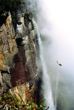 via National Geographic:    BASE jumper flies off Angel Falls in Venezuela.   Photograph by Ken Fisher