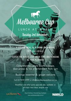 Cup Day Lunch at World Horse Mane Braids, Lippizaner, Olympic Equestrian, Tennessee Walking Horse, Clydesdale Horses, Melbourne Cup, Royal Ascot, Cup Design, Horse Breeds