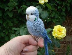 """Budgerigar Knitted life size Budgie """"Sugar """" swing and hat mini bear artist"""