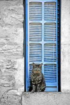 Dordogne, France | by CromagnondePeyrignac