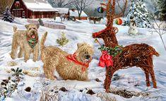 Soft Coated Wheaten Terrier - Christmas Impostor