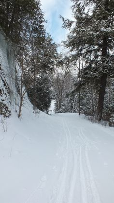 Photo of the Leaf Lake ski trail in Algonquin Park - Ontario Algonquin Park, Outside Activities, Ski Touring, Cross Country Skiing, Snow Skiing, Forests, The Great Outdoors, Winter Wonderland, Ontario