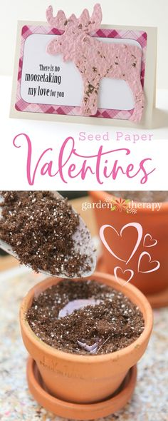 Give a gift that grows this Valentine's Day