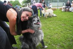 "On Sunday, June 2nd, a Soi Dog UK reunion was held in Wakefield, England. The event was a huge success, with adopters and their former ""soi dogs"" traveling from far and wide. https://www.facebook.com/SoiDogPageInEnglish/photos/a.137025779672499.11141.108625789179165/716461358395602/?type=1&theater"