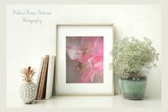 Rhapsody in Pink Flower Photography Prints by MelissaReesePeterson