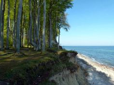 Impressionen von der Malreise an die Ostsee | Motive an der Steilküste bei Heiligendamm (c) FRank Koebsch (4)