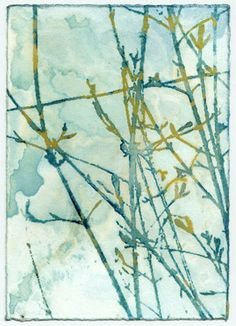 My cyanotypes that are available to purchase as art prints in various sizes. Nature Prints, Sun Prints, Cyanotype Process, Alternative Photography, Winter Wallpaper, Gelli Printing, Abstract Watercolor, Watercolour, Abstract Nature