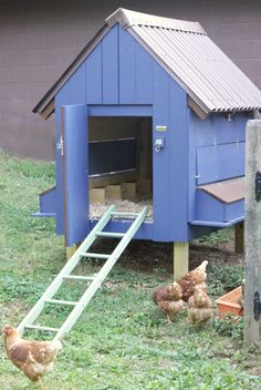 DIY Blue Chicken Coop painted in Heirloom China & Ballet Barre from Clark & Kensington