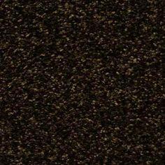 CORONADO BAY KOHL BROWN Texture TruSoft® Carpet - STAINMASTER®