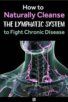 representation of lymphatic system in neck and shoulders with text - how to naturally cleanse the lymphatic system to fight chronic disease massage management Lymph Fluid, Lymphatic Drainage Massage, Lymphatic Detox, Workout Planner, Natural Cleanse, Natural Health Remedies, Herbal Remedies, Feel Tired, 30 Day Challenge
