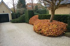 Beatiful gardens Plan by Studio Wim Verzandvoort (www. Landscape Plans, Landscape Design, Flower Garden Plans, Garden Hedges, Driveway Landscaping, Garden Architecture, Plantation, Garden Planning, Garden Projects