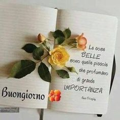 Automatic Reply Message, Italian Greetings, Phone Messages, Good Morning, Place Card Holders, Genere, Linguine, Gandhi, Night