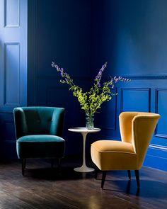 Betty armchair covered in Sunshine cotton matt velvet from Sofa.com