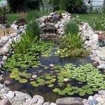 Yes, as every one knows, meditation and water are wedded forever. -- Melville Furthermore, as everyone knows, meditation is the cure for everything from insomnia to indigestion. So start meditating over water in your own backyard with the addition of a peaceful pond or a frothy fountain.
