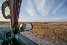 See southern Africa from a Bushtracker - it's an adventure waiting for you. South Africa Safari, Safari Adventure, Self Driving, Mother Nature, 4x4, Waiting, Wildlife, Southern, Landscape