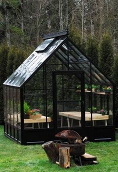 Glass greenhouse kit with a dramatic 45 degree sloped roof. This popular greenhouse is available in two sizes, 8 x 12 greenhouse and 12 x 16 greenhouse. Greenhouse sale every day. Diy Greenhouse Plans, Backyard Greenhouse, Small Greenhouse, Greenhouse Supplies, Homemade Greenhouse, Dome Greenhouse, Portable Greenhouse, Greenhouse Growing, Greenhouse Wedding
