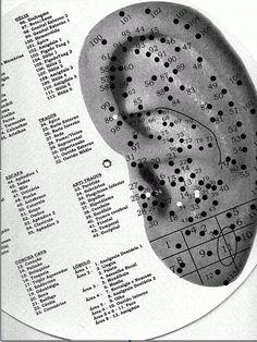 Resultado de imagen para tragus auriculoterapia