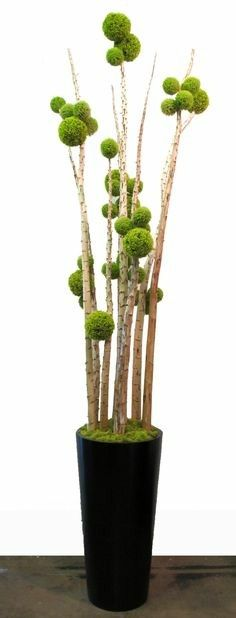 Green Allium Sphere on Yucca Poles in Black Fiberglass Tapered Round Container with Chartruese Reindeer Moss 123 Deco Floral, Arte Floral, Floral Design, Ikebana, Garden Beds, Garden Art, Moss Art, Pom Pom Crafts, Gras