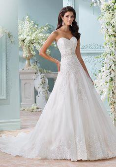 Strapless organza and metallic Schiffli lace appliqués over satin A-line gown with sweetheart neckline | David Tutera for Mon Cheri | https://www.theknot.com/fashion/116210-laina-david-tutera-for-mon-cheri-wedding-dress | https://moncheribridals.com/collections/wedding-dresses/david-tutera-for-mon-cheri/?utm_source=theknot.com&utm_medium=referral&utm_campaign=theknot&utm_content=gallery