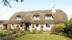 Image detail for -With its thatched roof and pretty garden, it is a cottage that truly befits the description chocolate box. Unfortunately for owner Sandy Hollowood, however, council . Thatched House, Thatched Roof, Storybook Homes, Charming House, Beautiful Dream, House Roof, Abandoned Houses, Country Style, The Ordinary