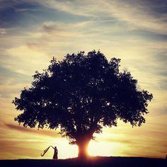 Voiles dans le ciel voile au vent. Mélusine #igersniort #igersfrance #Belambrawards #deuxsevres #tree_captures