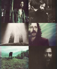 Sirius Black, one of the most interesting characters in the series, *sniff* Always Harry Potter, Hogwarts Letter, Yer A Wizard Harry, Gary Oldman, James Potter, Nerd Love, Sirius Black, Film Music Books, Mischief Managed