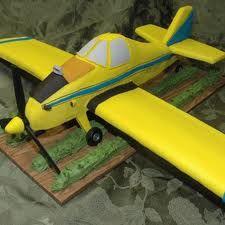 crop duster plane cake