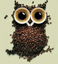 OMG!  My two favorites:  owls and COFFEE!