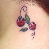 Resultados da Pesquisa de imagens do Google para http://dominador.net/fotos/2011/09/Fotos-de-tatuagem-feminina-delicada0.jpg